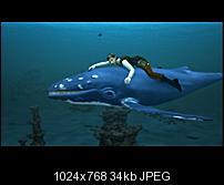 Kliknite na sliku za veću verziju  Ime:toh2010-09-92.jpg Viđeno:24 puta Veličina:34,0 KB ID:43234