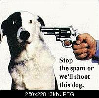 Kliknite na sliku za veću verziju  Ime:shoot-dog.jpg Viđeno:19 puta Veličina:12,5 KB ID:19588